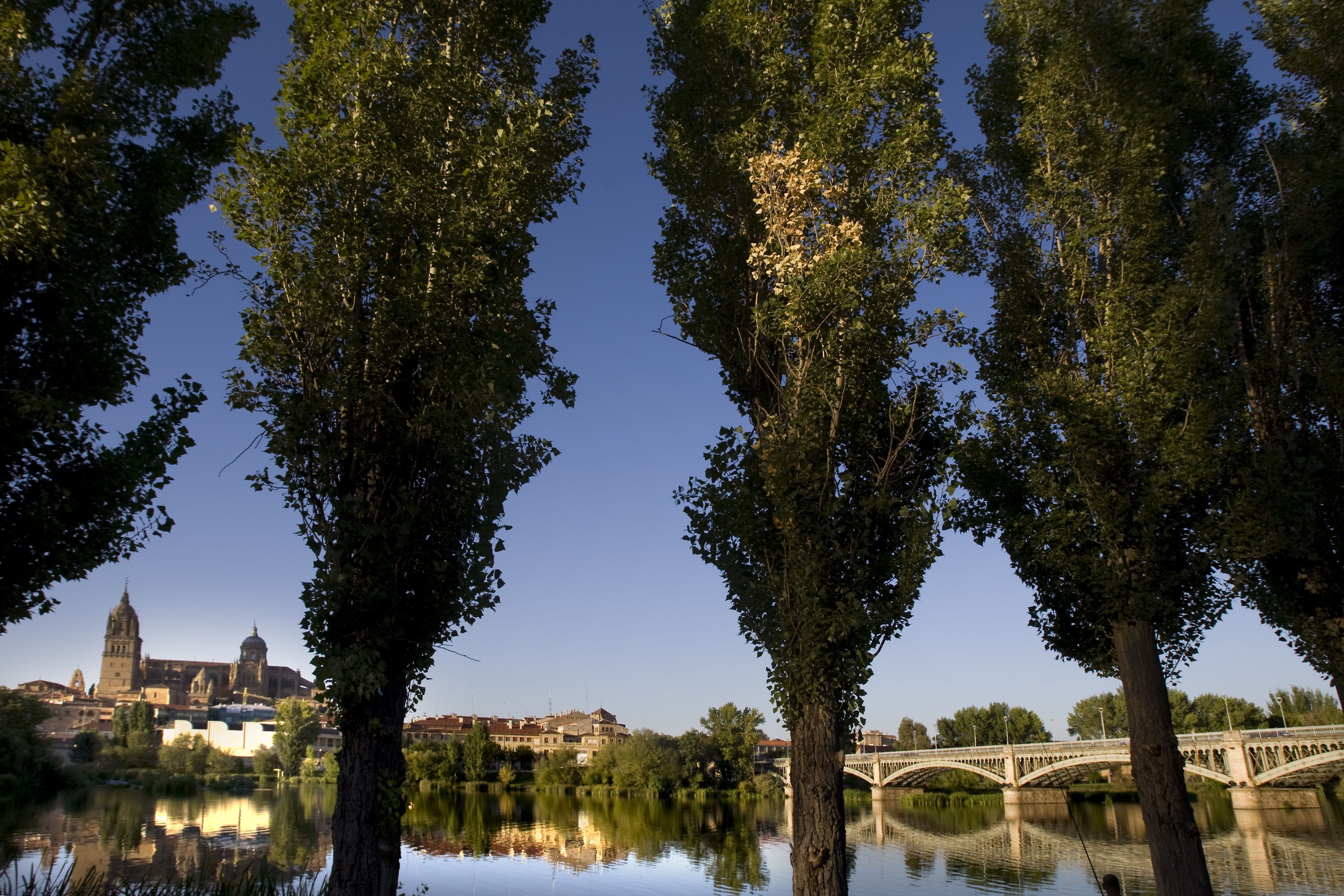 FOTO_Salamanca_Qcalidad_18122012