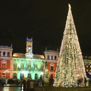 FOTO_CyL_Navidad_02122013_3