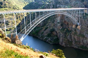 Puente Pino. Zamora