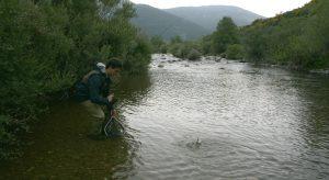 Pesca de trucha