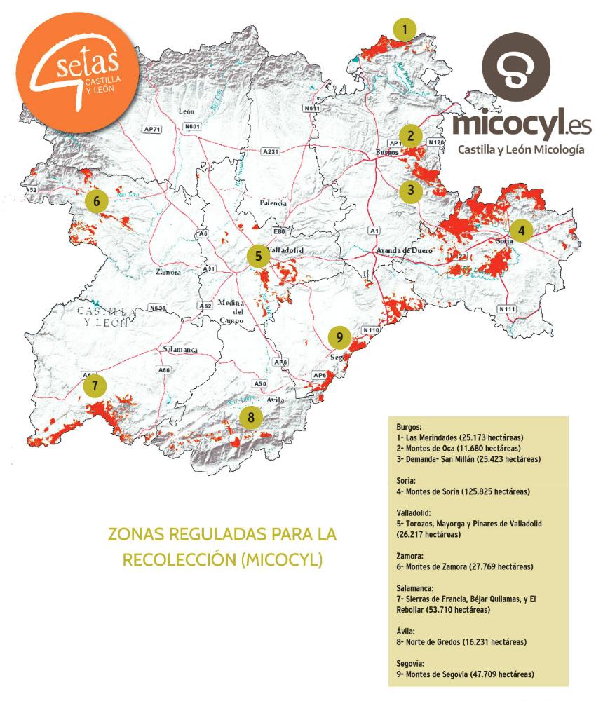 mapa micocyl