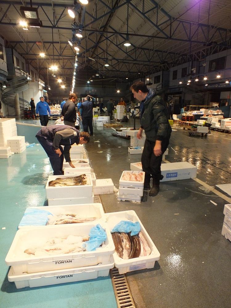 mercaolid pescado 2