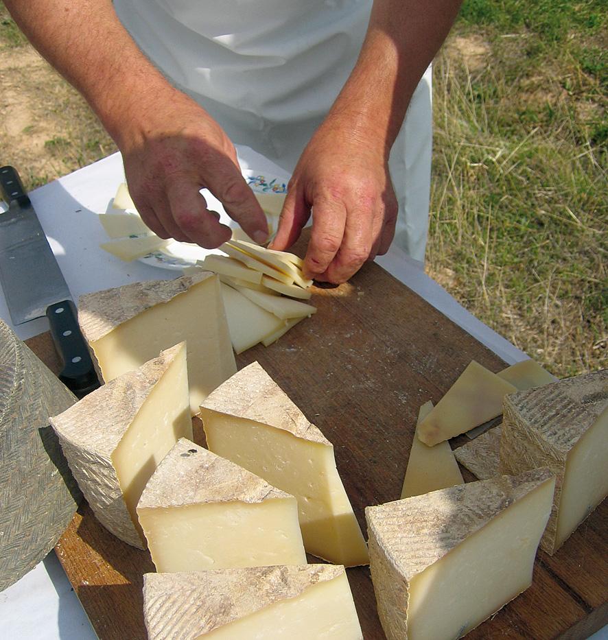 queso-tierra-sabor-2