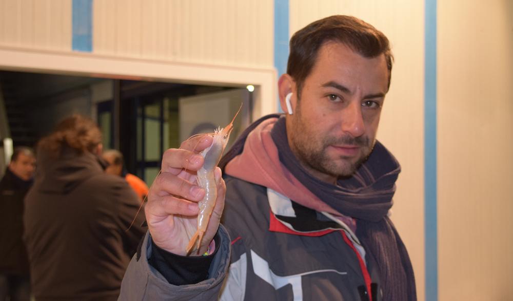 mercaolid pescaderia alondra