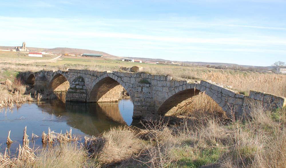 Sasamon puente