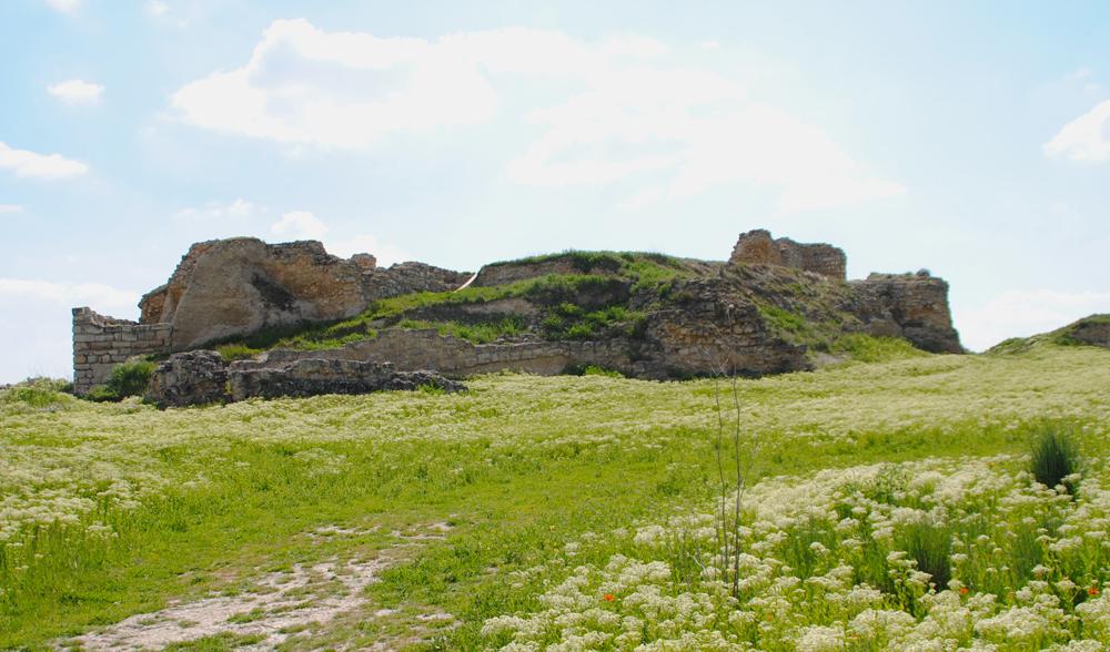 Restos del castillo de Mucientes