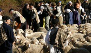 Despedida-de-los-pastores-(Trashumando-recuerdos)