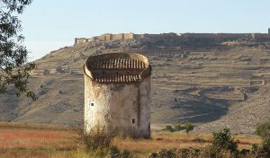 Palomar-de-Recuerda-y-al-fondo-fortaleza-de-Gormaz,-Soria-(Cappa-Segis)