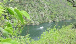 almez-barco-turistico-arribes